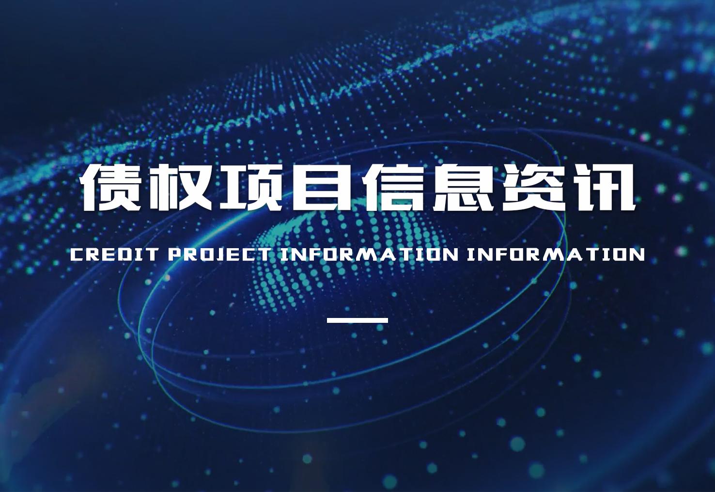 债权项目信息资讯
