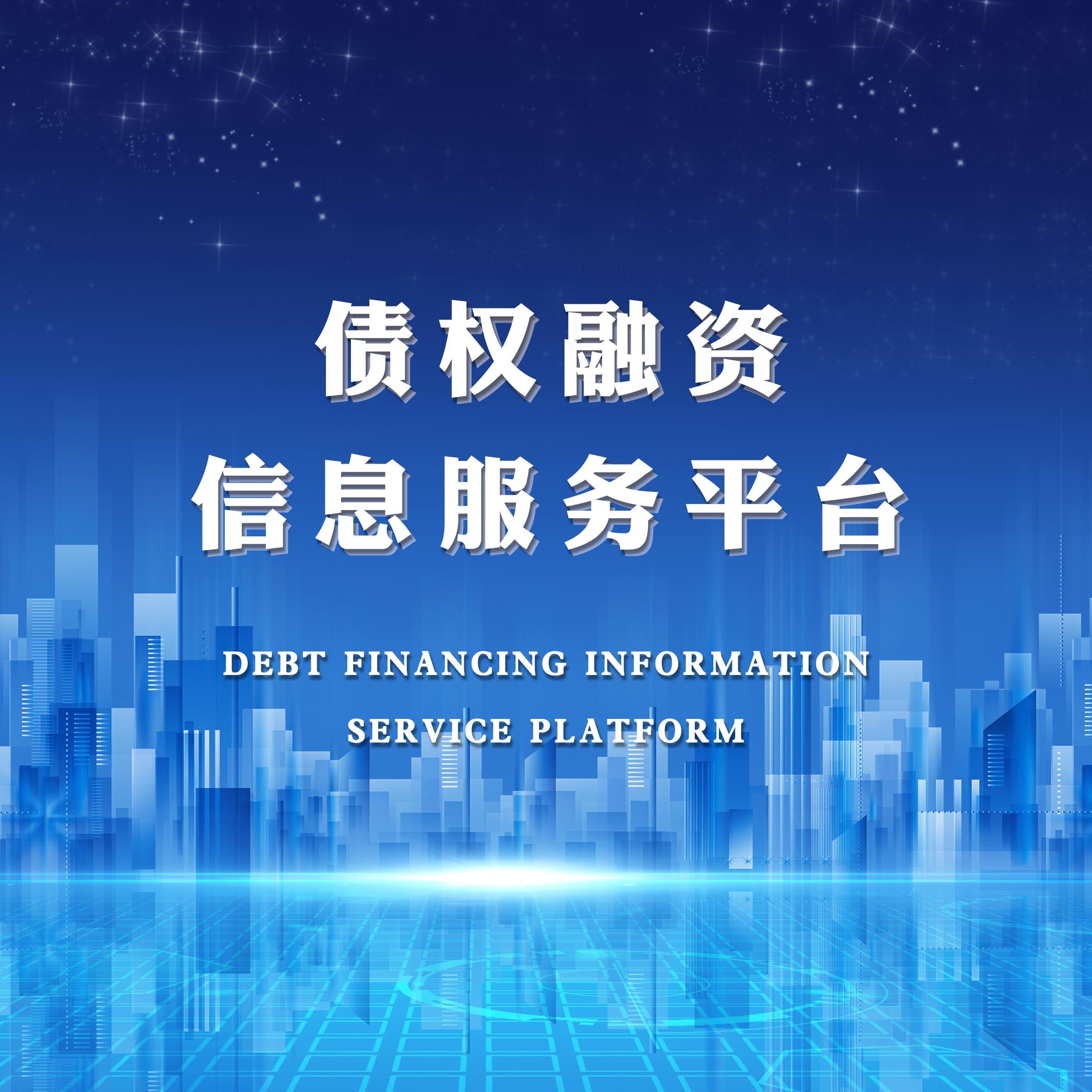 债权融资信息服务平台