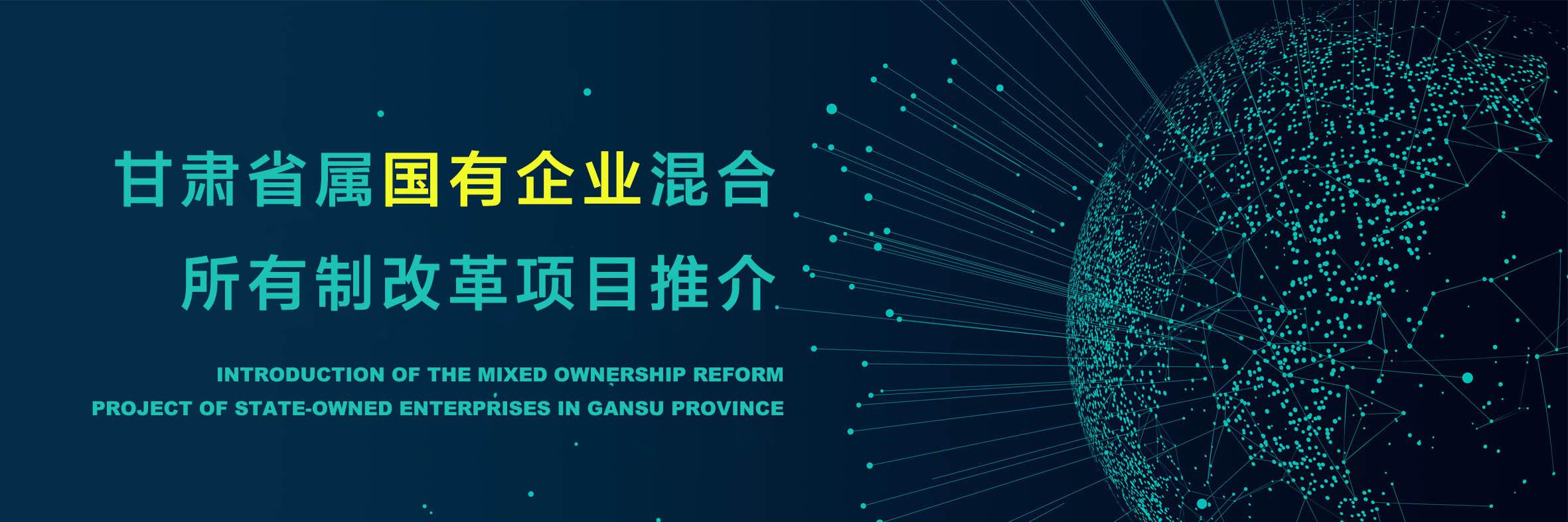 甘肃省属国有企业混合所有制改革 项目推介(第一期)