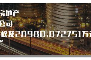 资阳沁峰房地产开发有限公司100%股权及28980.872751万元债权转让