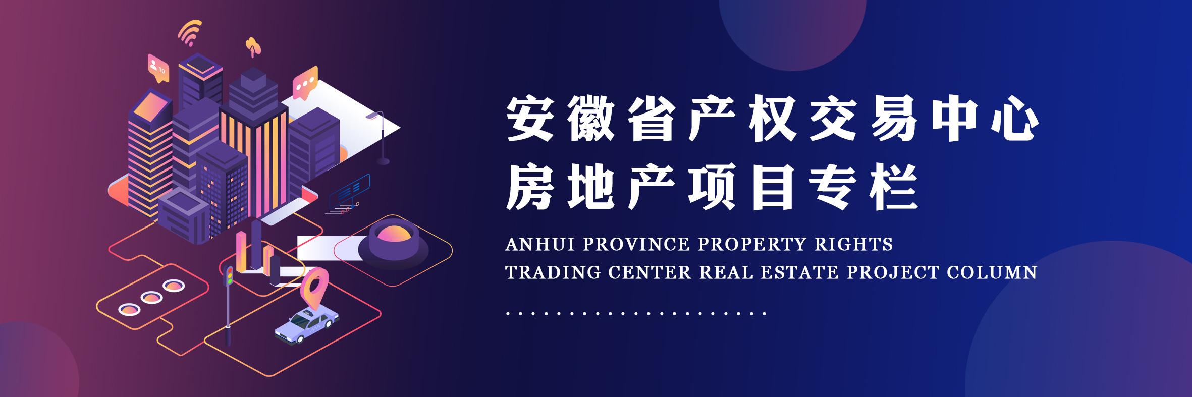安徽省产权交易中心房地产项目专栏